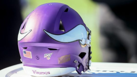 NFL: DEC 15 Vikings at Chargers